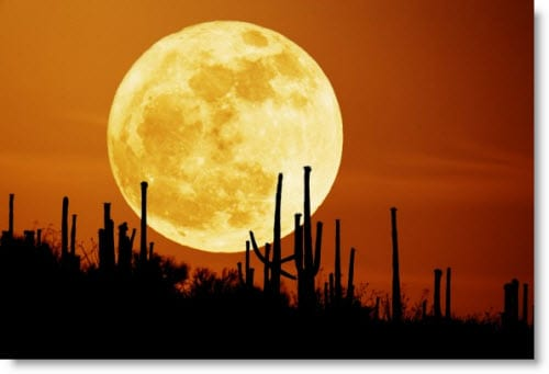 super moon, full moon rituals, full moon, shreem brzee, brzee, magic, mantra, abundance, prosperity, wealth