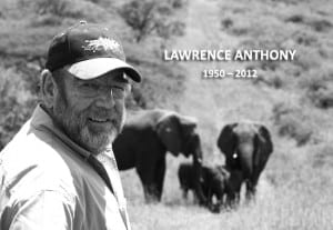 lawrence anthony, elephants, love, lawrence anthony elephants, transcendence of love, love has no boundries, animal love, human and animals bond
